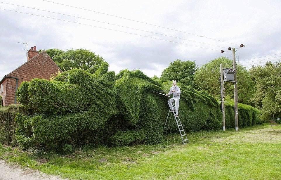Dragón verde
