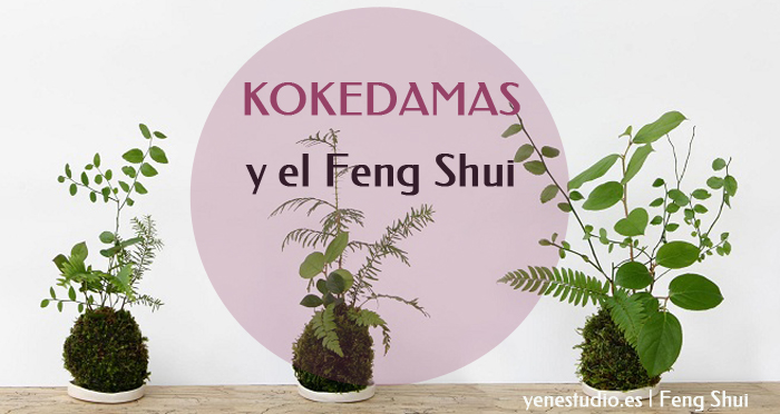 Kokedamas y el feng shui