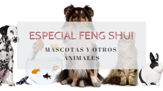 Feng Shui: Mascotas y otros animales